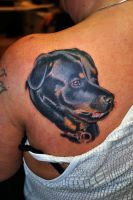 Rottweiler tattoo by gettattoo