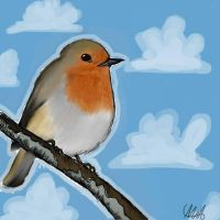 Robin by Maggsec4