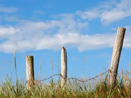 Old Fence by nordfold