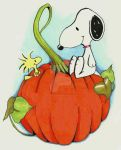 Snoopy and Woodchuck by Alicia22Art