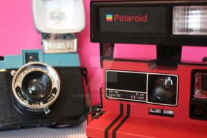 Diana + Polaroid by queenfrOg