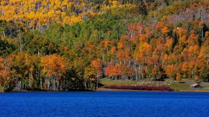 Kolob Fall II by ernieleo