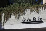 Cafe Store Sign draped in Vines by Luvyduvduvisi1