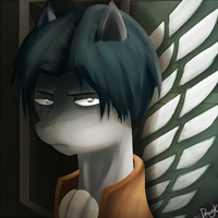 Captain Levi Ponified - Shingeki no kyojin by Dragk