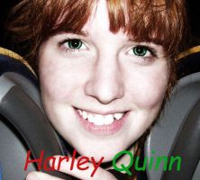 Me as Quinn - ID by HarleyTheGreat