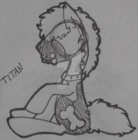 .: MLP : Test Pose 3 :. by Rainb0wTwister