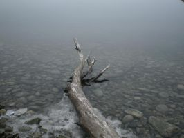 Reaching Towards The Mist by Pentacle5
