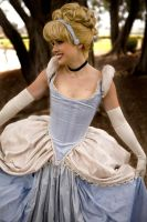 Cinderella Closeup by trueenchantment