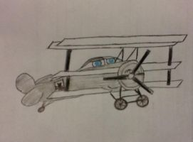Request: stecdude123- Fan Character plane by Northwestern-Viola13