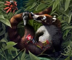 Coati and Tarantula Terry and Suzie 2 by Psithyrus