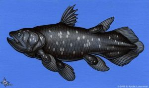 Coelacanth by kyoht