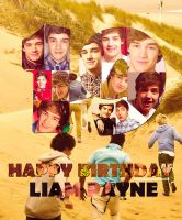 H-DAY LIAM PAYNE! by ColoringMyOwnWorld