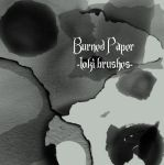 Burned Paper Brushes by YoursTruelyStock