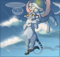 New Heights by Kitchiki
