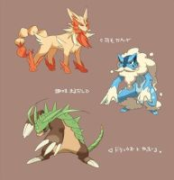 Pokemon X Y Starter evolutions by DarkWolf9000