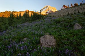 Sunset at Wy'East Basin by greglief