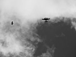 4 Wings A Heart and 2 Motors by JeremyC-Photography