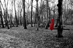 Little Red Riding Hood by W-I-T-C-H