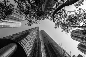 Zenith Towers by TimGrey