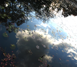Autumn Pond at Twillight by theblindalley
