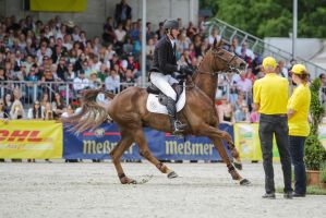 3DE Show Jumping Phase Stock 65 by LuDa-Stock