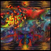 Ab10 Dreams of Butterfly by Xantipa2