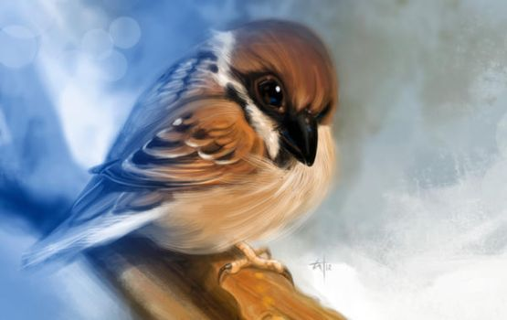 Sparrow Print by popChar