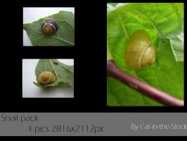 Snail pack by Cat-in-the-Stock