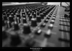 Audiography 2 by hensler
