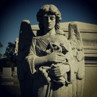 Angels: 02 by TropicalxLondon