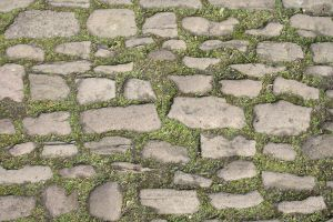 SMD Free Texture 10: Mossy Stone Path by Spicy-Monster
