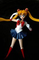 Sailor Moon - Model Kit 2 by yashakawaii