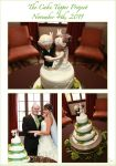 The Cake Topper Project by HeidiArnhold