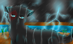 Stonepelt Caught in the storm~ by Dragongod2o0