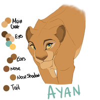 Ayan Reference by Ersalaa