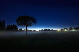 Night Time II by MikkoLagerstedt