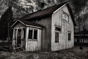 Grey Recollections I by Ardak