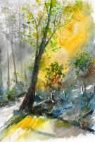 watercolor 114081 by pledent