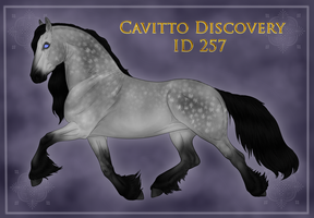 Cavitto Custom Discovery ID 257 by Astralseed
