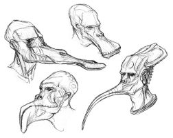 Anthravignathid Sketches by thomastapir
