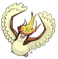 Day 24: Pidgeot by Arkluden