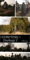 Cemetery Package 2 by almudena-stock