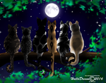 Moon Watching by HalloDream