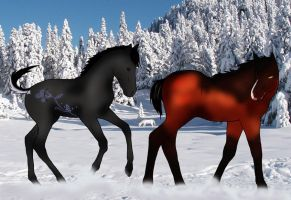 New Blood at HoLS_Foal Auction Try by Kysan