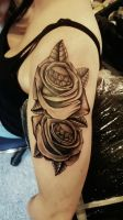 roses and Diamonds by zok4life