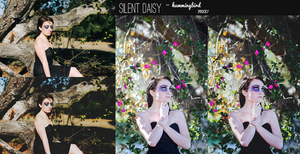 FREE    Silent Daisy- Hummingbird Photoshop Action by tiny-moon