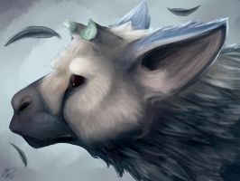 Trico by Mollish