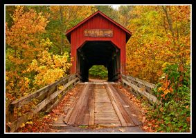 Bean Blossom bridge, redux L1060873 with story by harrietsfriend