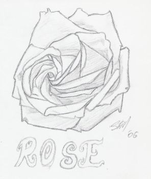 Rose by sycolution