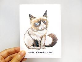 Grumpy Cat Thank You Card by sobeyondthis